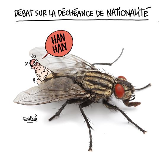160105_la-revue-dessinee_01_enculage-de-mouche-hollande-projet-loi-decheance-1